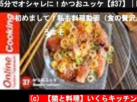 旬のカツオををおしゃれに料理(おすすめ動画)