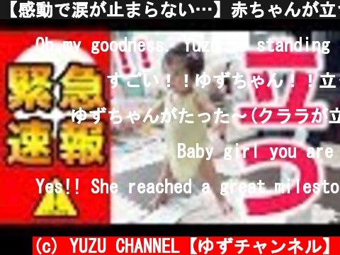 【感動で涙が止まらない…】赤ちゃんが立つ瞬間の撮影に成功! YUZU stood up and you did it by yourself!!  (c) YUZU CHANNEL【ゆずチャンネル】