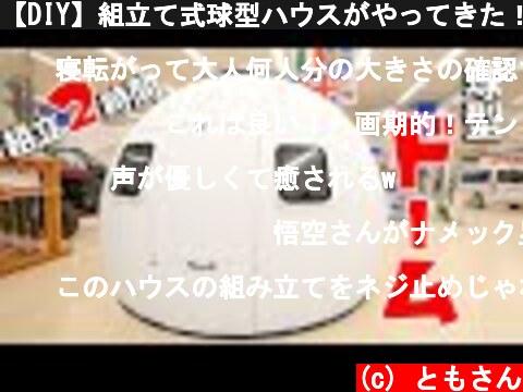 【DIY】組立て式球型ハウスがやってきた!2時間で建てれるミニドームEZDOME HOUSE  (c) ともさん