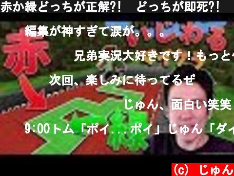 赤か緑どっちが正解?!  どっちが即死?! 【いじわるマイクラ第2回】  (c) じゅん