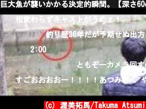 巨大魚が襲いかかる決定的瞬間。【深さ60cm】  (c) 渥美拓馬/Takuma Atsumi