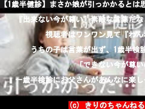 【1歳半健診】まさか娘が引っかかるとは思ってなかった・・・【パパ育児】  (c) きりのちゃんねる