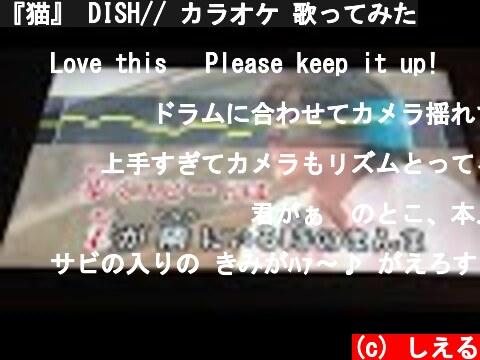 『猫』 DISH// カラオケ 歌ってみた  (c) しえる