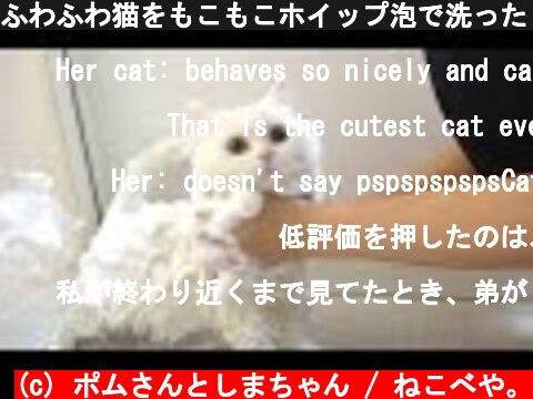ふわふわ猫をもこもこホイップ泡で洗ったら真の姿に!?  (c) ポムさんとしまちゃん / ねこべや。