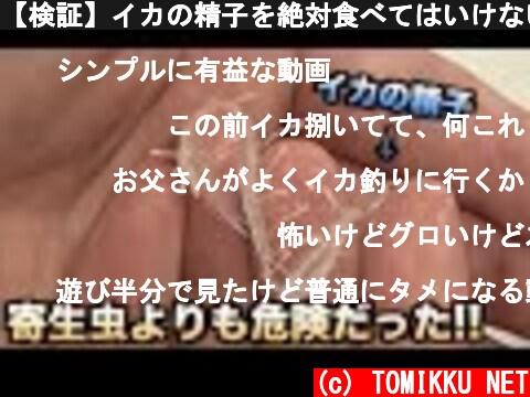 【検証】イカの精子を絶対食べてはいけない理由がわかる動画  (c) TOMIKKU NET