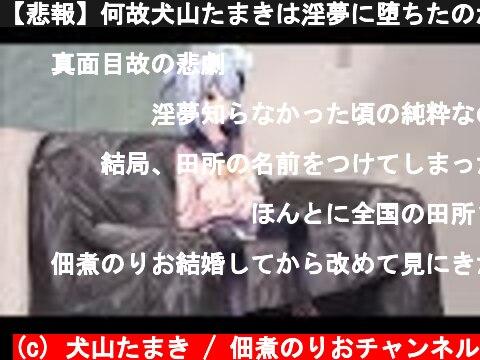 【悲報】何故犬山たまきは淫夢に堕ちたのか?【3D動画】  (c) 犬山たまき / 佃煮のりおチャンネル