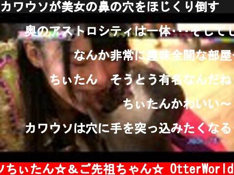 カワウソが美女の鼻の穴をほじくり倒す  SBS ヨエロスン OTTER  (c) コツメカワウソちぃたん☆&ご先祖ちゃん☆ OtterWorld
