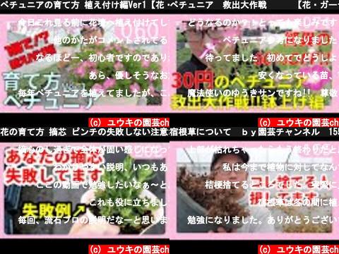 ユウキの園芸ch(おすすめch紹介)