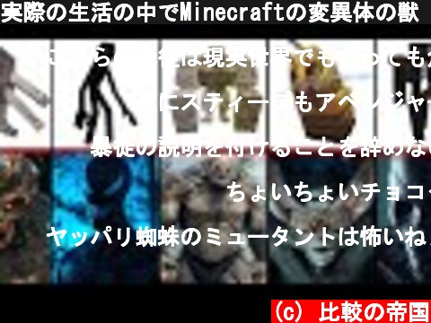 実際の生活の中でMinecraftの変異体の獣「比較」  (c) 比較の帝国