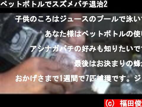 ペットボトルでスズメバチ退治2  (c) 福田俊