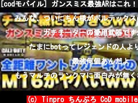 ガンスミス最強AR最強カスタムM16(おすすめ動画)