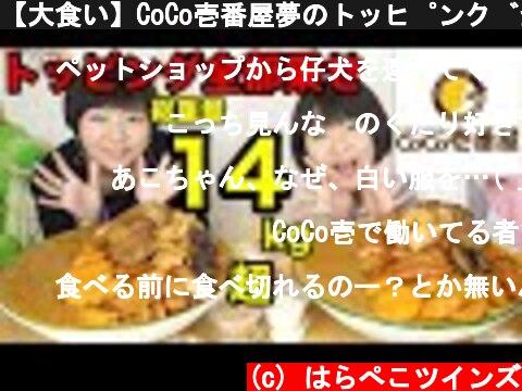 【大食い】CoCo壱番屋夢のトッピング全部乗せ!カレー20人前・ご飯14合!カロリー祭り!【双子】  (c) はらぺこツインズ