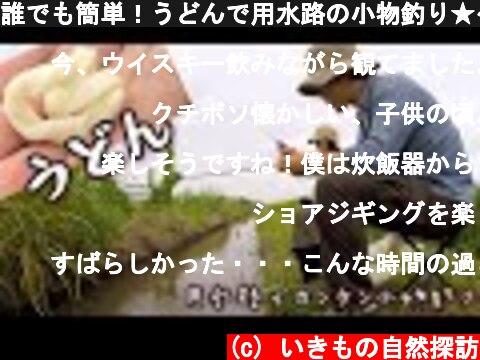 誰でも簡単!うどんで用水路の小物釣り★~埼玉県南部の田んぼ~  (c) いきもの自然探訪