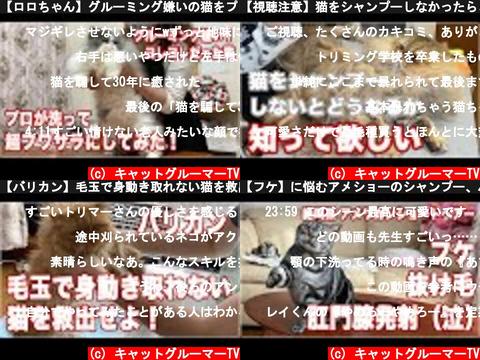 キャットグルーマーTV(おすすめch紹介)