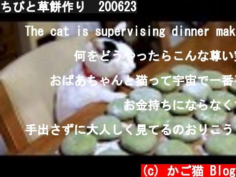 ちびと草餅作り 200623  (c) かご猫 Blog