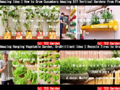 TEO Garden(おすすめch紹介)
