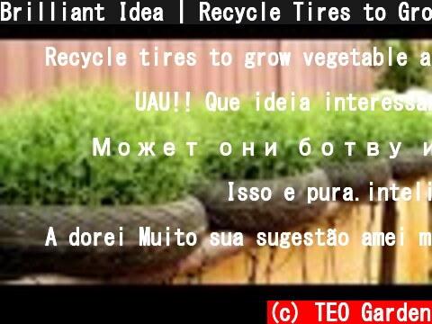 Brilliant Idea | Recycle Tires to Grow Vegetable at Home, Easy for Beginners  (c) TEO Garden