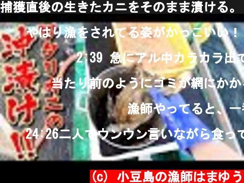 捕獲直後の生きたカニをそのまま漬ける。2日間放置して松岡さんと飲む! [沖カンジャンケジャン]  (c) 小豆島の漁師はまゆう