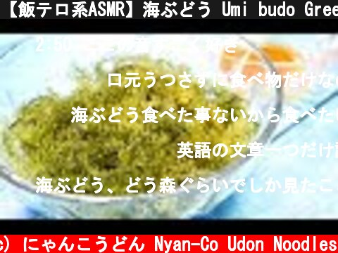 【飯テロ系ASMR】海ぶどう Umi budo Green Caviar Eating Sounds【咀嚼音】  (c) にゃんこうどん Nyan-Co Udon Noodles