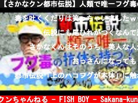 【さかなクン都市伝説】人類で唯一フグ毒の抗体を持つ!?ネットの伝説はホント?  (c) さかなクンちゃんねる - FISH BOY - Sakana-kun