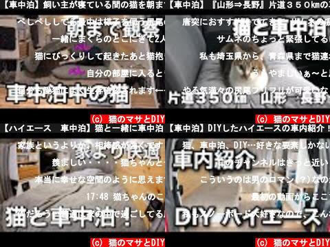 猫のマサとDIY(おすすめch紹介)