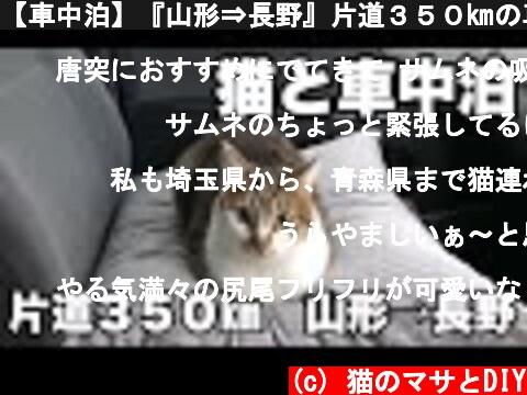 【車中泊】『山形⇒長野』片道350㎞の車中泊旅。長野の家に帰るため、DIYしたキャンピングカー仕様っぽいハイエースで、猫のマサと一緒に車中泊と車中飯。  (c) 猫のマサとDIY