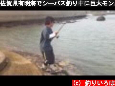 佐賀県有明海でシーバス釣り中に巨大モンスターに遭遇!  (c) 釣りいろは