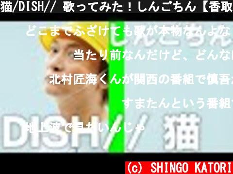 猫/DISH// 歌ってみた!しんごちん【香取慎吾】  (c) SHINGO KATORI