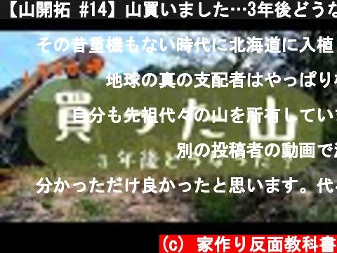 【山開拓 #14】山買いました…3年後どうなったのか…   永遠に草刈りすることになる…  (c) 家作り反面教科書