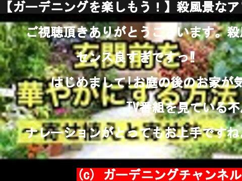 【ガーデニングを楽しもう!】殺風景なアプローチを寄せ植えと寄せ鉢で華やかにします。寄せ植えの解体から鉢を配置するところまでの動画です。  (c) ガーデニングチャンネル