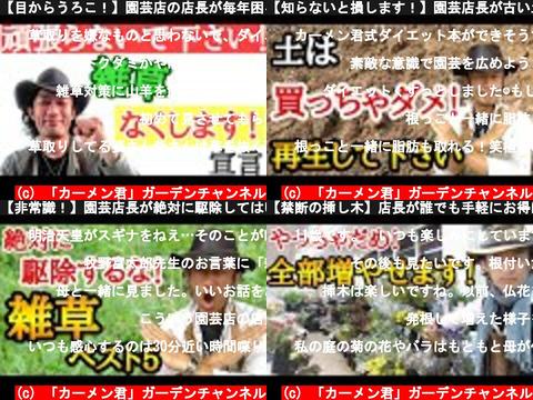 「カーメン君」ガーデンチャンネル(おすすめch紹介)