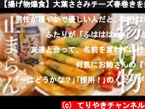 【揚げ物爆食】大葉ささみチーズ春巻きを好きなだけ食べる幸せ晩ごはん  (c) てりやきチャンネル