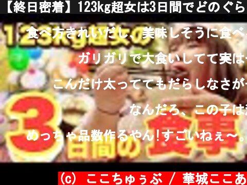 【終日密着】123kg超女は3日間でどのぐらい食べるのか!?【少食?爆食?】  (c) ここちゅぅぶ / 華城ここあ