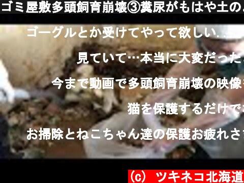 ゴミ屋敷多頭飼育崩壊③糞尿がもはや土のよう。掃除と猫の保護をしてきました。  (c) ツキネコ北海道
