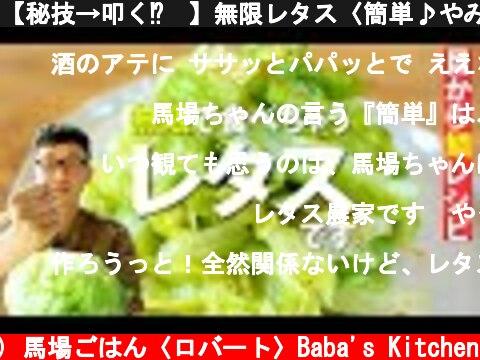 【秘技→叩く⁉︎】無限レタス〈簡単♪やみつき常備菜〉  (c) 馬場ごはん〈ロバート〉Baba's Kitchen