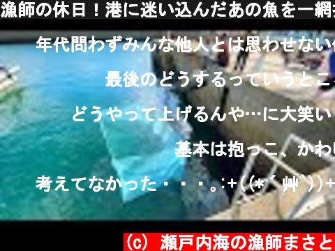 漁師の休日!港に迷い込んだあの魚を一網打尽にしました①  (c) 瀬戸内海の漁師まさと