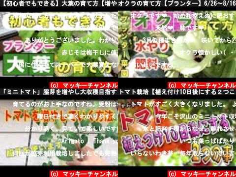 マッキーチャンネル(おすすめch紹介)