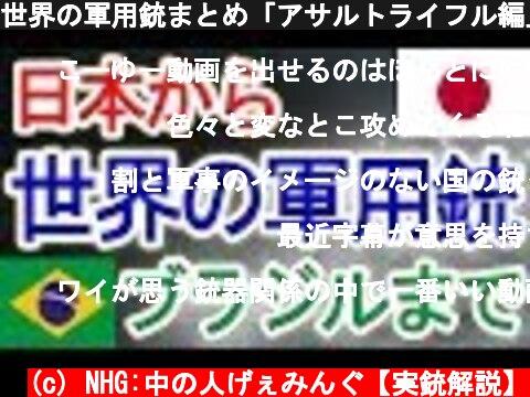 世界の軍用銃まとめ「アサルトライフル編」【NHG】  (c) NHG:中の人げぇみんぐ【実銃解説】