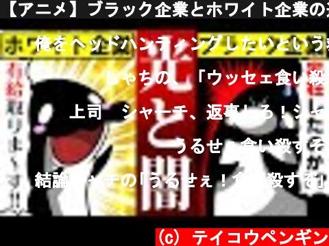 【アニメ】ブラック企業とホワイト企業の違い  (c) テイコウペンギン