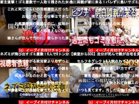 イーブイ片付けチャンネル(おすすめch紹介)