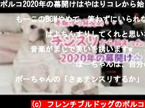 ポルコ2020年の幕開けはやはりコレから始まった...w☆【フレンチブルドッグ】  (c) フレンチブルドッグのポルコ