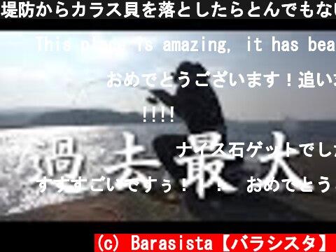 堤防からカラス貝を落としたらとんでもない生物が…  (c) Barasista【バラシスタ】