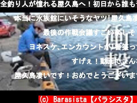 全釣り人が憧れる屋久島へ!初日から誰も予想だにしない超巨大魚が…!?【屋久島 #1】  (c) Barasista【バラシスタ】