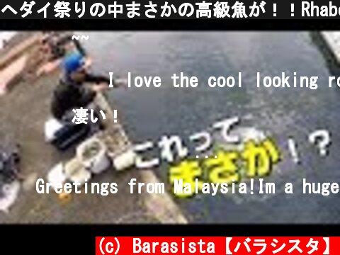 ヘダイ祭りの中まさかの高級魚が!!Rhabdosargus sarba fishing  (c) Barasista【バラシスタ】