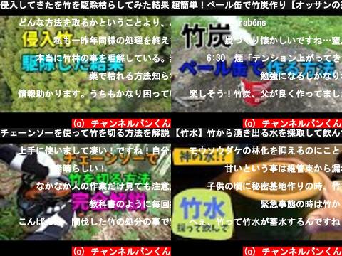 チャンネルバンくん(おすすめch紹介)