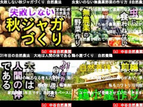 中谷自然農園(Youtube 動画 pick up)