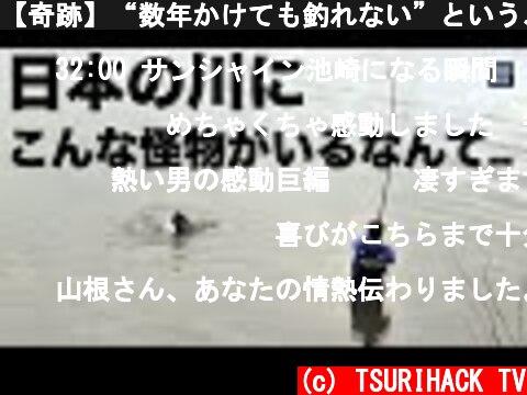 """【奇跡】""""数年かけても釣れない""""という、幻の巨大魚との出会い。釣りは本当に素晴らしい趣味だと思う。  (c) TSURIHACK TV"""