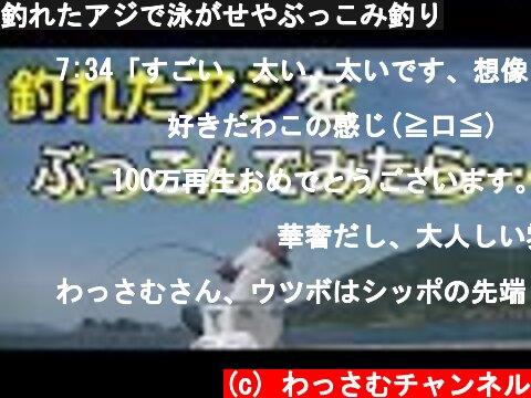 釣れたアジで泳がせやぶっこみ釣り  (c) わっさむチャンネル