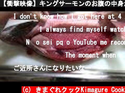 【衝撃映像】キングサーモンのお腹の中身がイクラまみれだった   King salmon 【has subtitles】  (c) きまぐれクックKimagure Cook