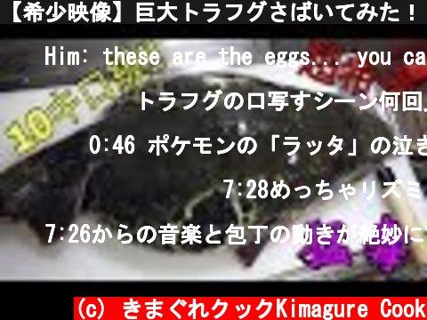 【希少映像】巨大トラフグさばいてみた!【10キロ級】Big Poison Puffer 毒药河豚吃  (c) きまぐれクックKimagure Cook